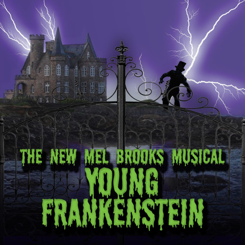 Young Frankenstein web 800x800 2